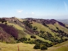 Mallory Ridge - Los Vaqueros Watershed